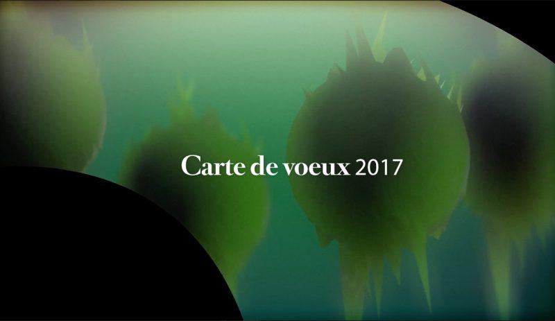cartedevoeux2017